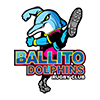 Ballito Dolphins Rugby Club